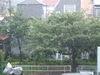 2009_0831aa